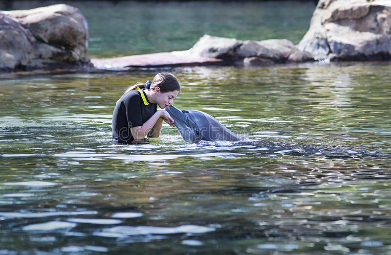 Teenage girl kissing a dolphin in an ocean lagoon royalty free stock photography