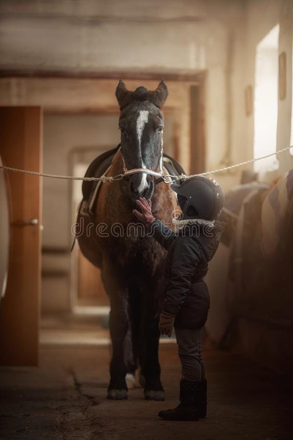 Teenage girl standing with horse in a stable stock photo