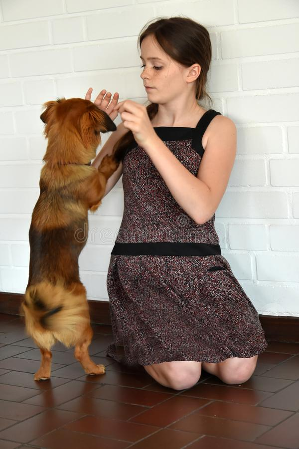 Teenage girl trains her little puppy dog royalty free stock photo