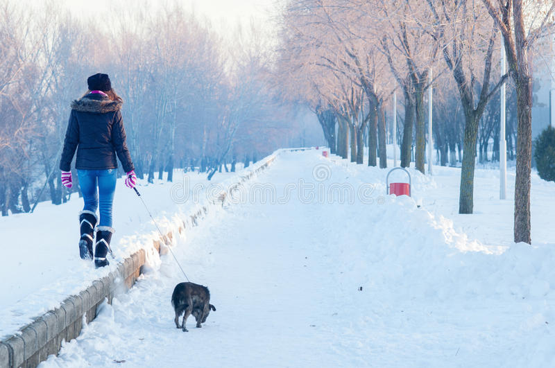 Teenage girl walking the dog on cold sunny winter day stock photo