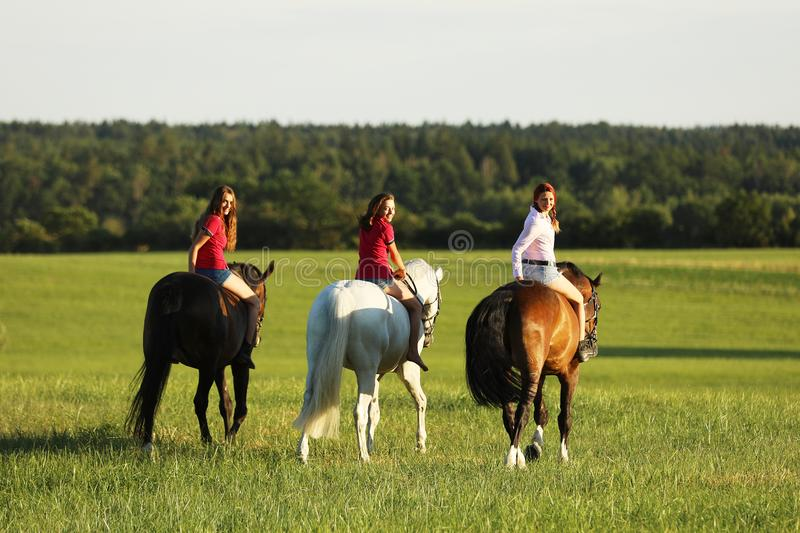 Teenage girls on horse walking on meadow in afternoon without saddle, looking back stock photos