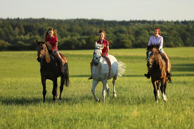 Teenage girls on horse walking on meadow in afternoon without saddle royalty free stock photography