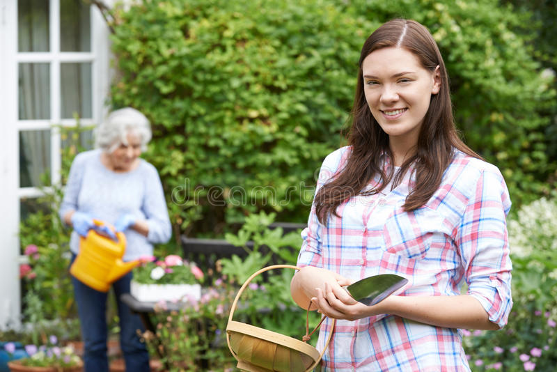 Teenage Granddaughter Helping Grandmother In Garden stock photos