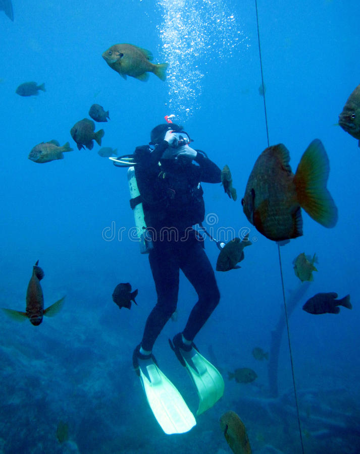 Teenage Scuba Student - Clears Ears stock images