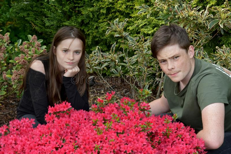 Siblings posing for photos in the garden stock images