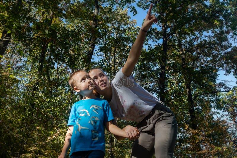 Teenage syster visar något för sin yngre lillebror i skogen på sin familjesemester fotografering för bildbyråer