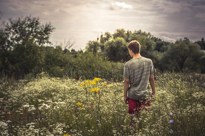 Teenager boy lonely walking summer meadow dramatic moody scenery stock photo
