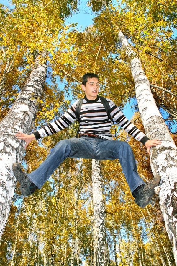 Download Teenager climb a tree stock image. Image of brich, climb - 26253767
