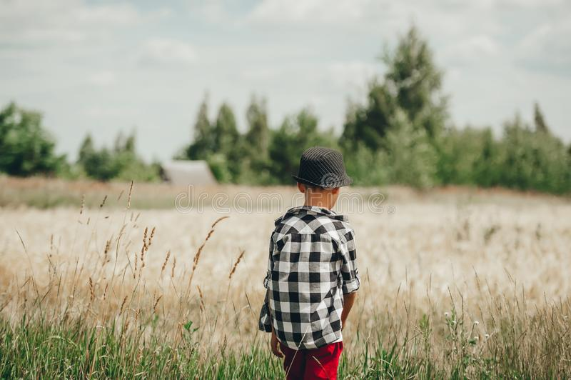 Teenager in hat walk on a summer wheat field. Rural scene. Walking in the farm. Back view royalty free stock photo