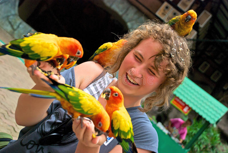 Download Teenager with parrots stock image. Image of teenager - 24678795