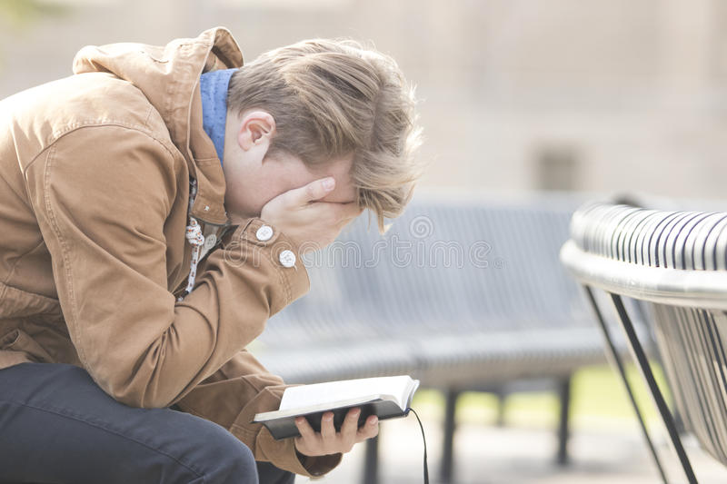 Teenager sitting on bench reading Bible and praying stock photography