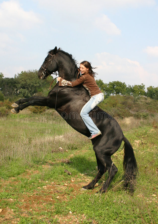 Teenager and stallion upright royalty free stock photos