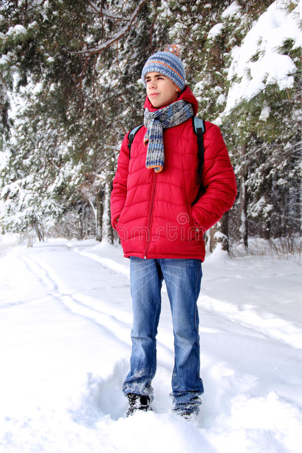 Download Teenager in winter forest stock photo. Image of companions - 28186886