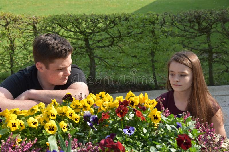 Teenagers, girl and boy have quarrel. Teenagers, have quarrels they are in the garden near the colorful viola flowers stock images