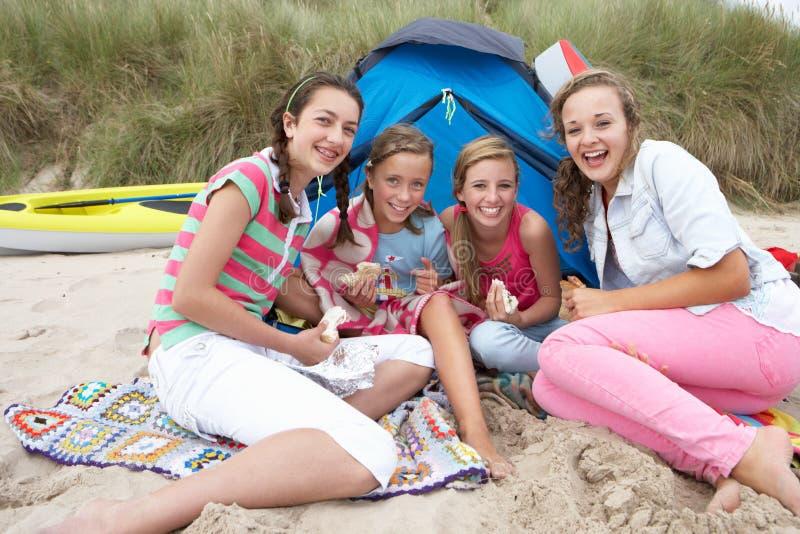 Teenagers having picnic stock image
