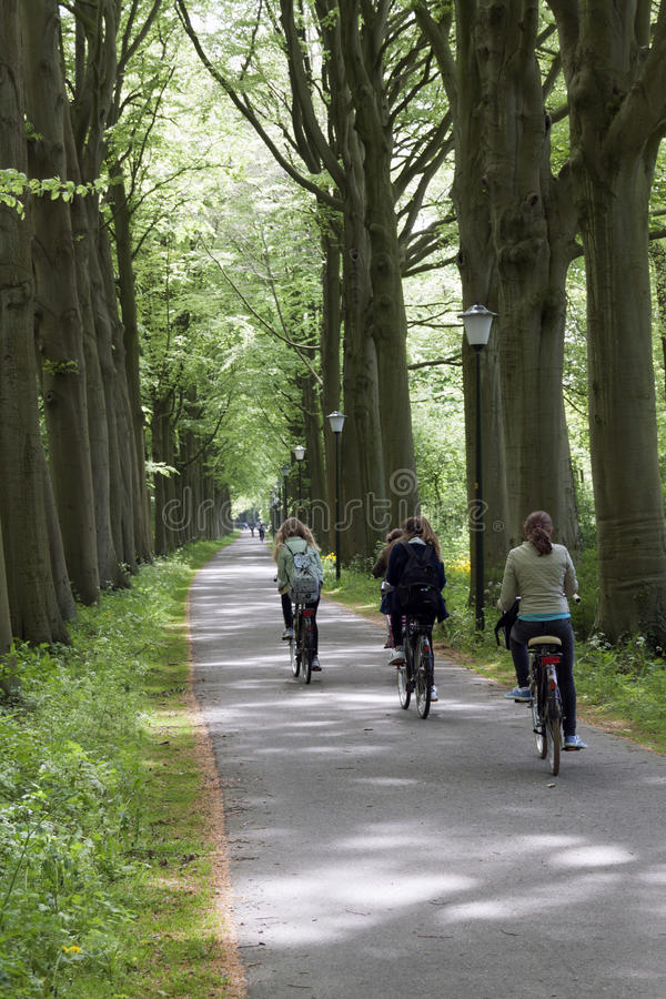 Teenagers students on the bike on the way to school. The Hague,netherlands-may 11, 2015: teenagers students on the bike on the way to school cycling in a forest royalty free stock photography