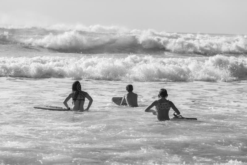 Teenagers Swimming Surfing Waves. Teenagers girls boy swimming surfing morning ocean waves stock photo