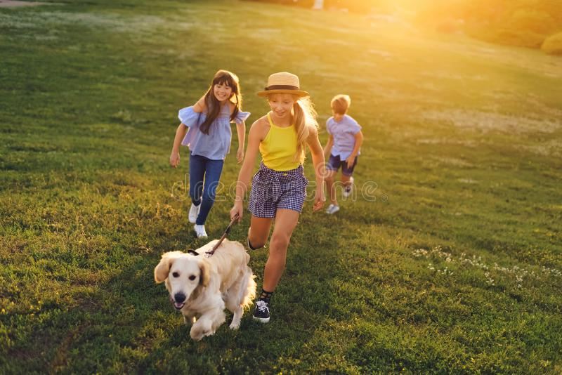 Teenagers walking with dog. Happy teenagers with cute golden retriever dog walking in park royalty free stock photo