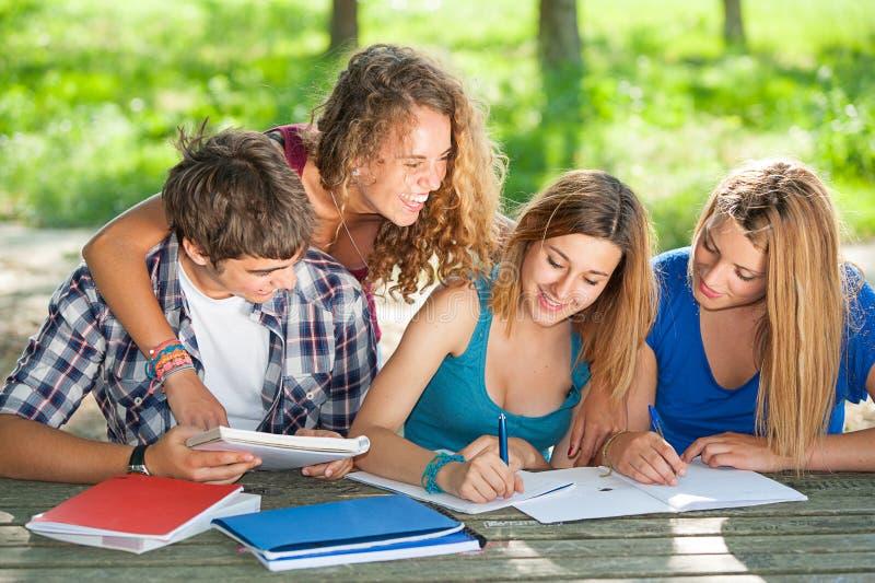 Teeneger Studenten, die am Park zusammenarbeiten lizenzfreies stockfoto