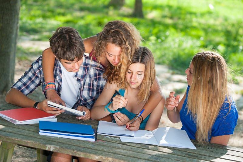 Teeneger Studenten, die am Park zusammenarbeiten stockfotografie