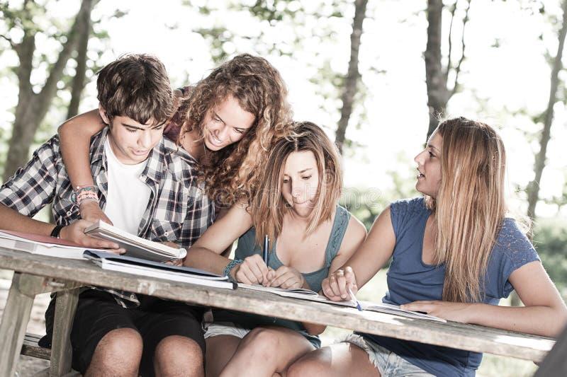 Teeneger Studenten, die am Park zusammenarbeiten stockbild