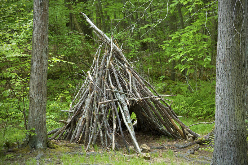 Teepee shelter made from stacked branches, Devi'ls Hopyard, Conn. Close view of teepee shelter made of stacked branches, in the woods at Devil's Hopyard State royalty free stock images