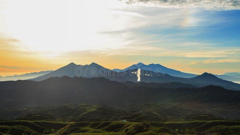 Teeplantagen in Malasari, Bogor, Indonesien Sonnenaufgangszene mit Schattenbildberg und blauem Himmel stockbild