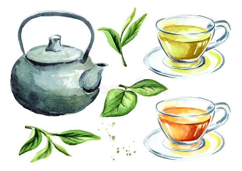 Teesatz mit Topf, Schalen und grünen Teeblättern Gezeichnete Illustration des Aquarells Hand, lokalisiert auf weißem Hintergrund lizenzfreie abbildung