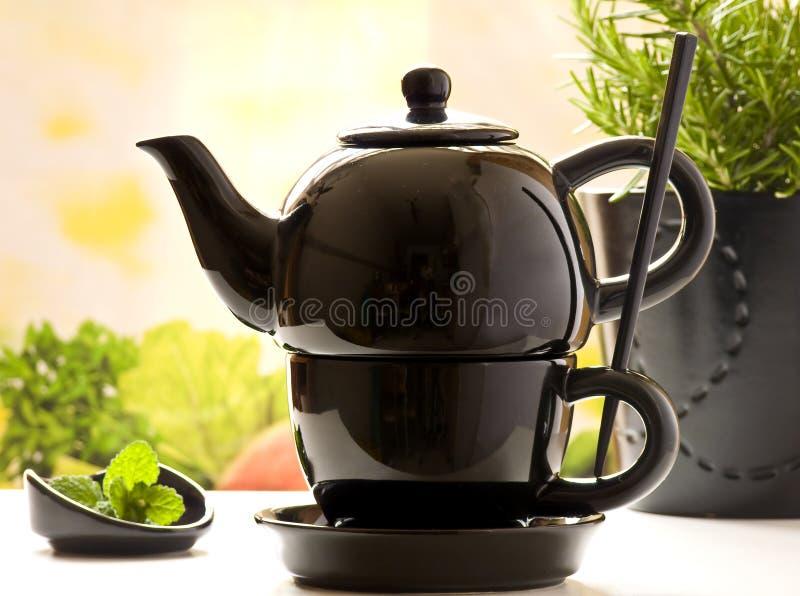 Teeservice, Blätter der Minze und Rosmarin lizenzfreie stockfotos
