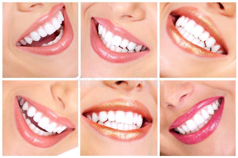Teeth. Beautiful young woman teeth. Close up