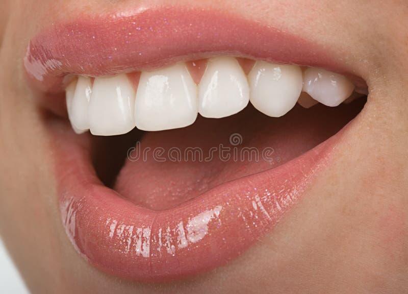 Download Teeth stock image. Image of veneer, lipstick, cosmetic - 9363673