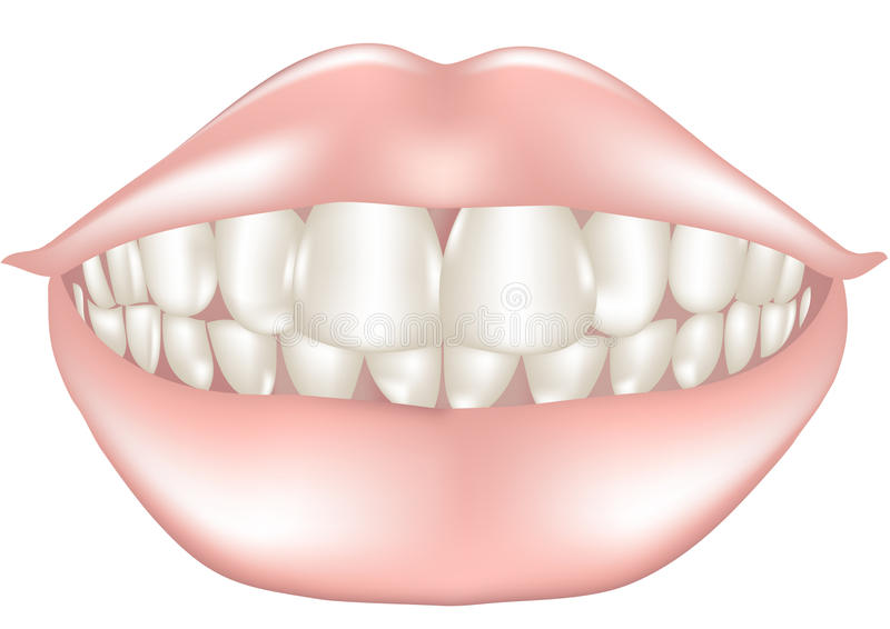 Download Teeth stock photo. Image of patient, female, lips, dental - 36359498