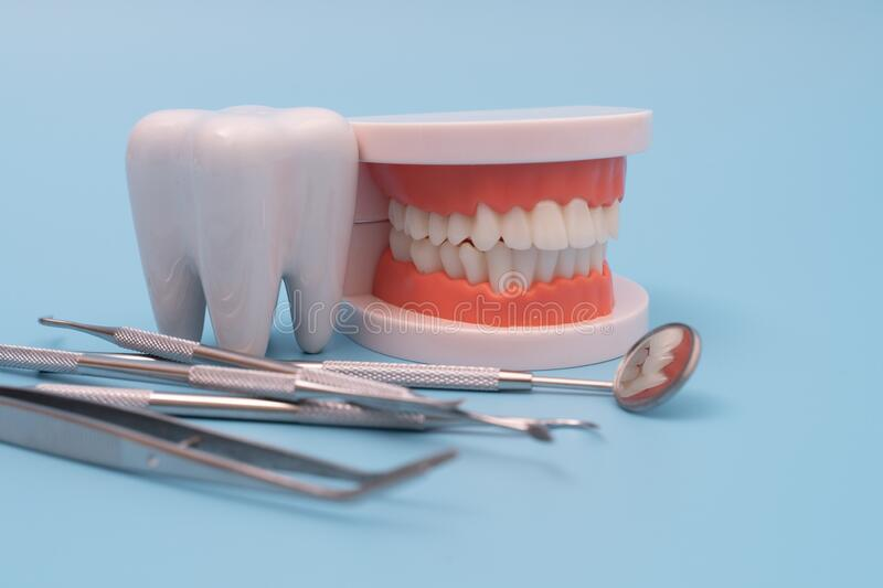 Teeth model and dentist tool on blue royalty free stock photo