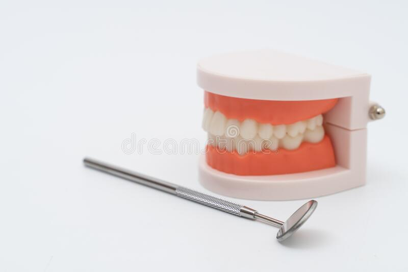 Teeth model and dentist tool on white royalty free stock photography