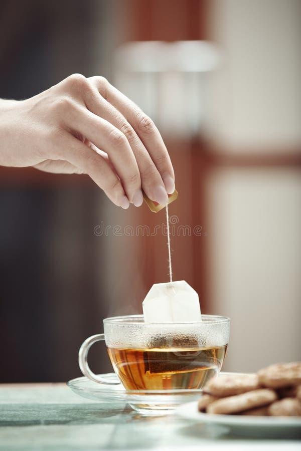 Teförberedelse arkivbild