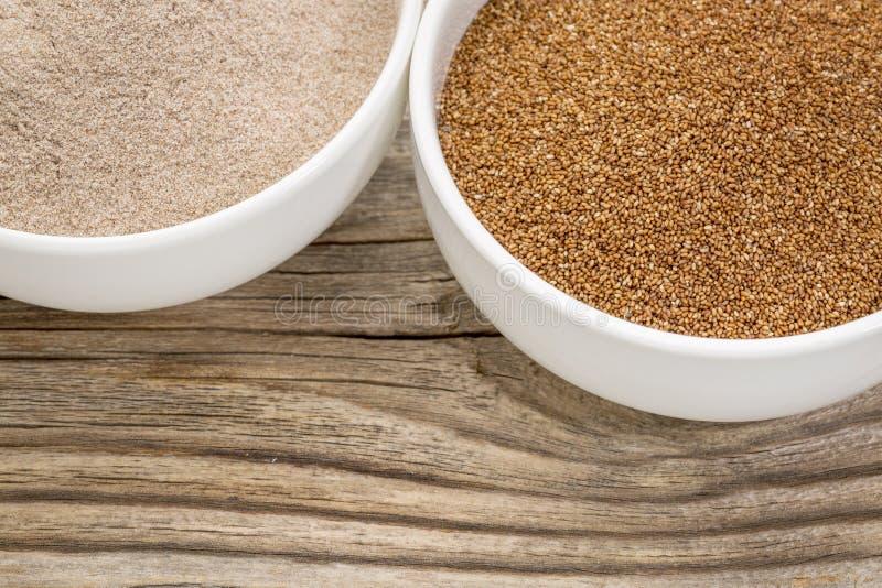 Teff korn och mjöl arkivfoto