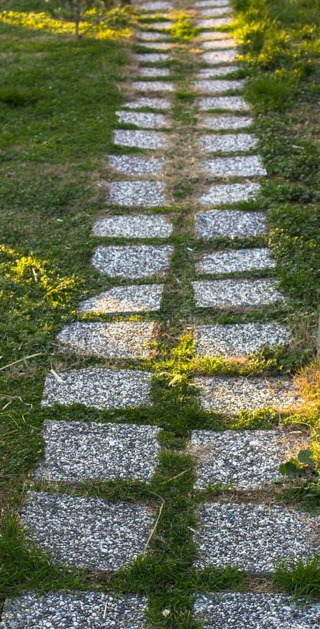 Tegelplattabana på en grön gräsmatta Istanbul parkerar arkivfoton