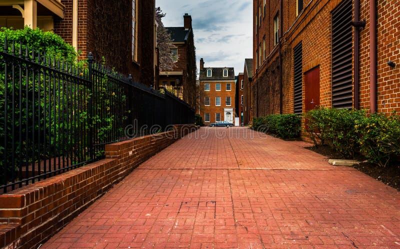 Tegelstengränd och hus i avverkningpunkt, Baltimore, Maryland arkivfoto
