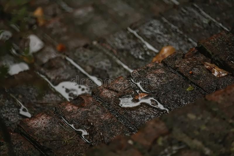 Tegelstenmoment i regnet