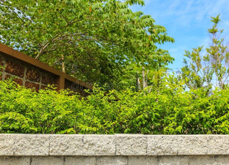 Download Tegelstenvägg Och Gräsplanblad Arkivfoto - Bild av ferie, blom: 76703184
