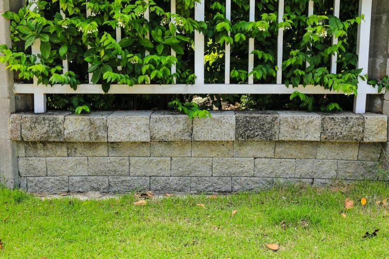 Download Tegelstenvägg Och Gräsplanblad Fotografering för Bildbyråer - Bild av staket, naturligt: 76703545