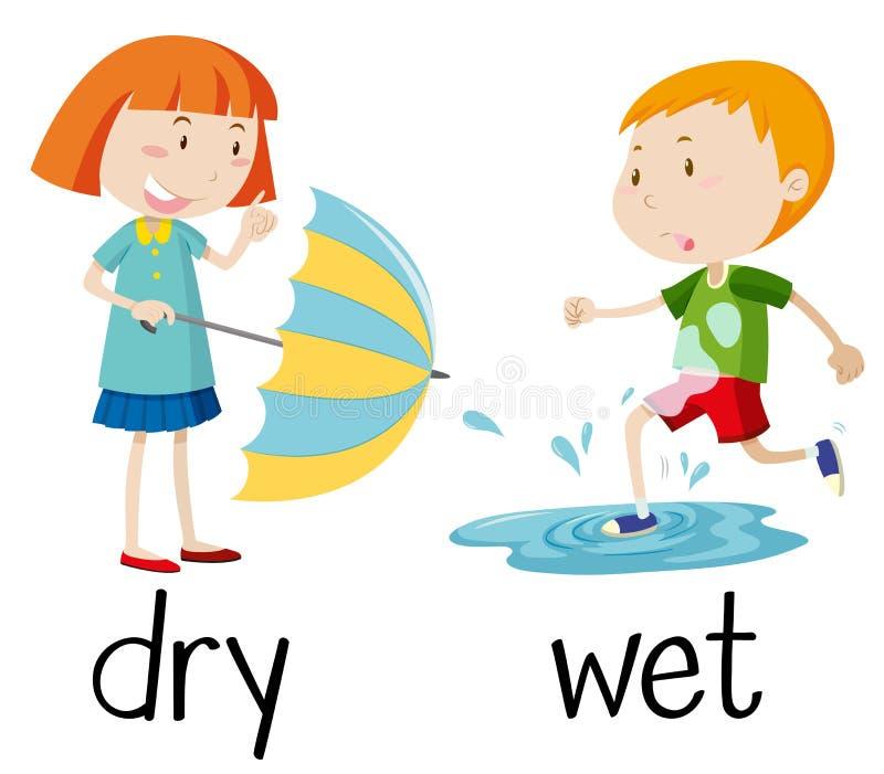 Tegenovergestelde wordcard voor droog en nat stock illustratie