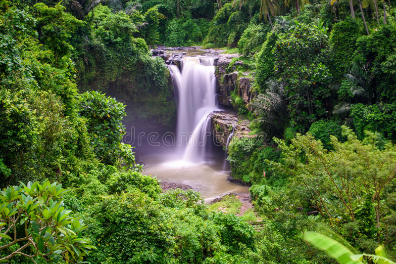 Tegenungan vattenfall i bali 5 royaltyfri fotografi