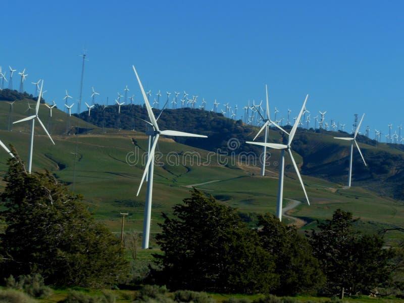 Tehachapi-Durchlauf-Windpark stockfotos