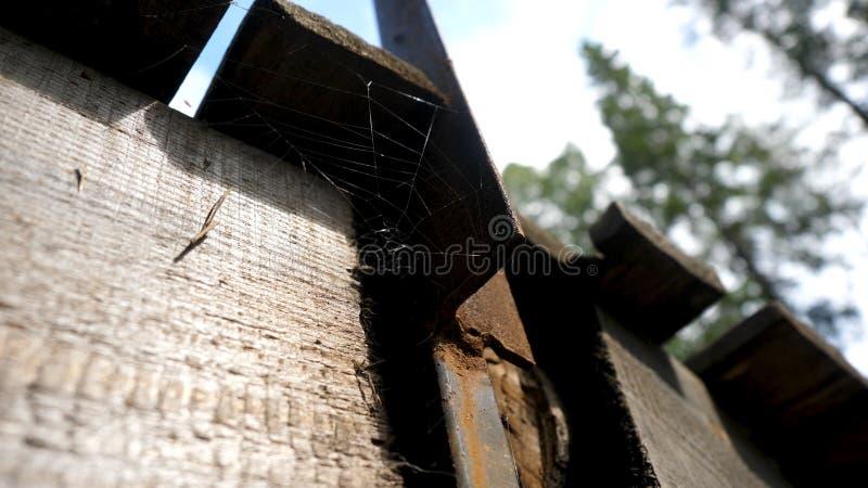 Teias de aranha velhas na casa abandonada A rede da aranha sob o telhado Teias de aranha sob o telhado imagem de stock