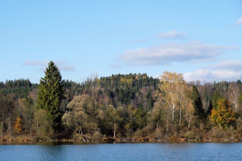 Teich bei Icking nahe gelegenes München im Bayern lizenzfreies stockbild