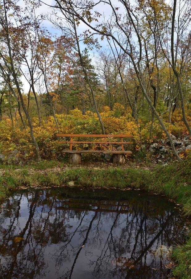 Teich im Carso stockbild