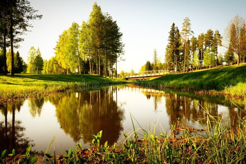 Teich mit den Bäumen, die über ihn nachdenken stockfoto