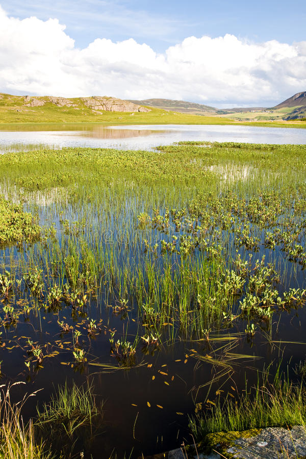 Teich, Schottland lizenzfreies stockfoto