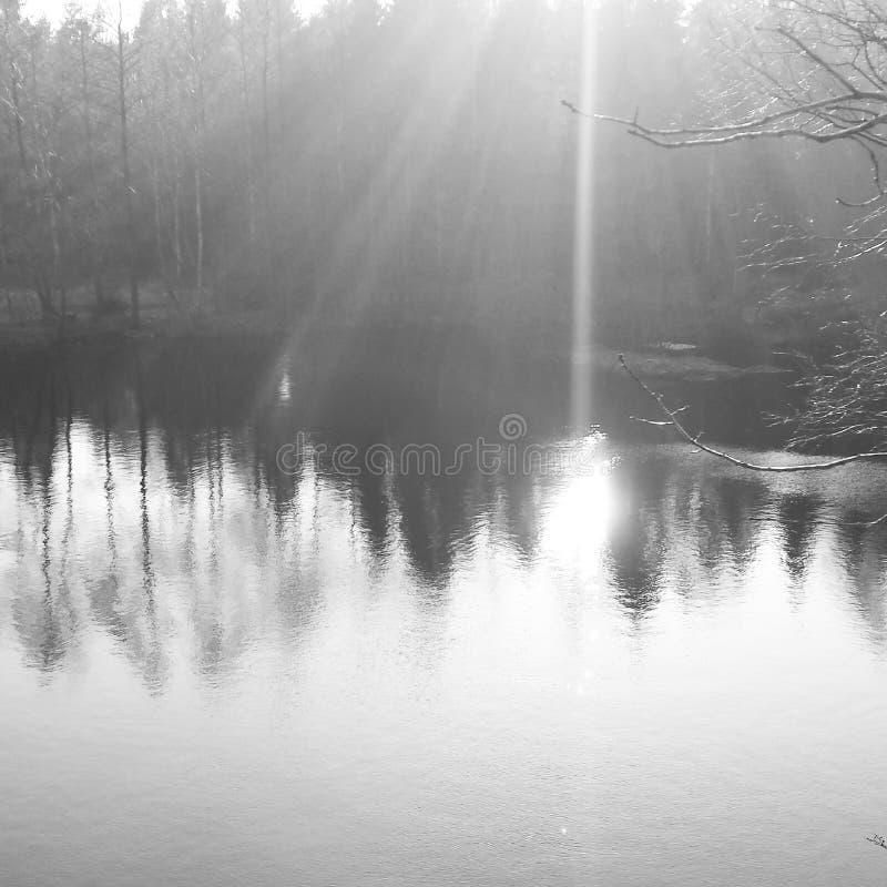 Teich in Schweden stockfotos